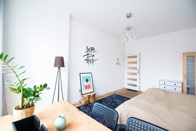 Dale nueva vida a los espacios interiores de tu hogar con estas plantas ornamentales